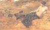 A ninfa Cirene, um dos amores do deus Apolo