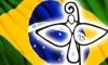 Dia 14 — Conferência Nacional dos Bispos do Brasil